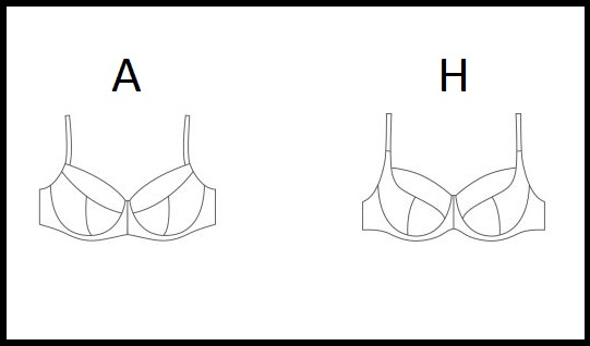 A VS H